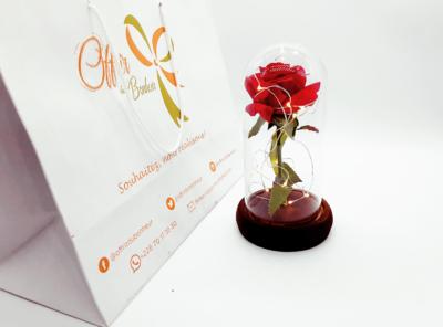 Rose Éternelle dans son Dôme en Verre