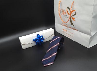 Cravate en soie à motifs rayés (Marine)