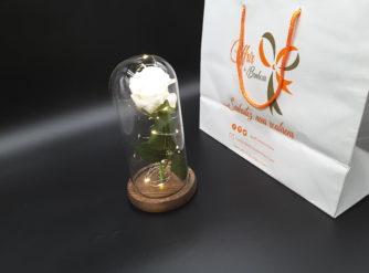 Rose éternelle dans un dôme de verre
