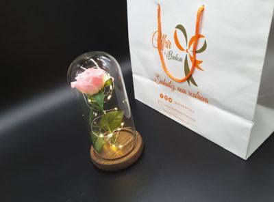 Rose éternelle dans un dôme de verre (rose)