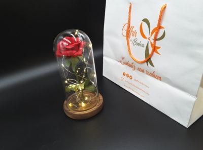 Rose éternelle dans un dôme de verre (rouge)